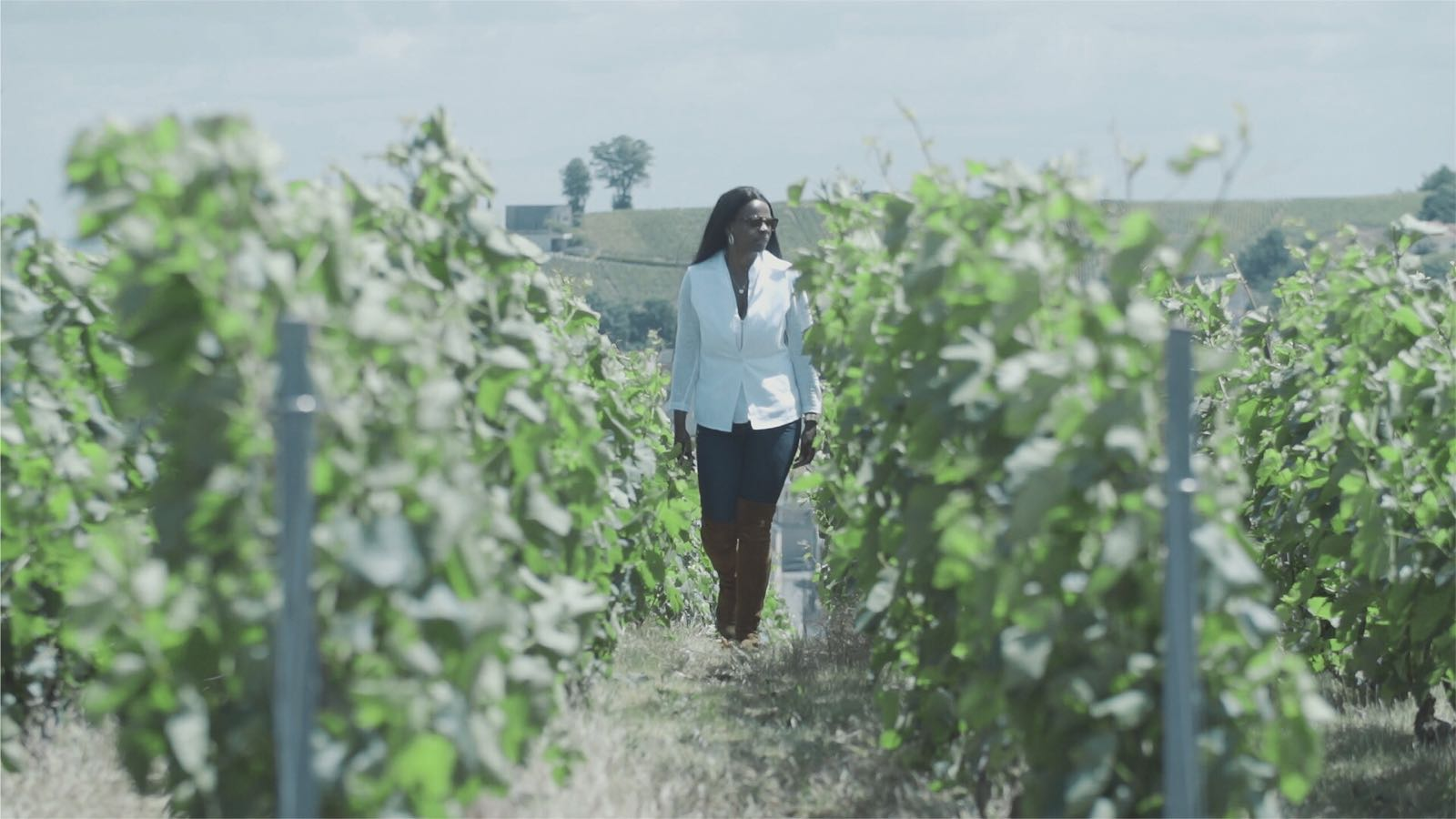 Champagne Les Cinq Filles Cuvee - Yvonne walking among the Vines
